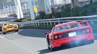 【大黒PA】スーパーカー加速サウンド/Supercars sound in Japan. F40, AventadorSV, LB650s, HuracanPerformante, and more