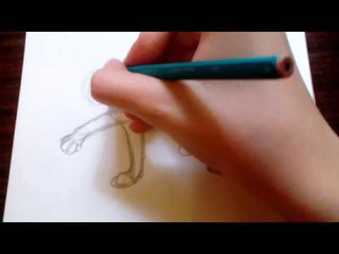 Как нарисовать рысь поэтапно карандашом легко для детей