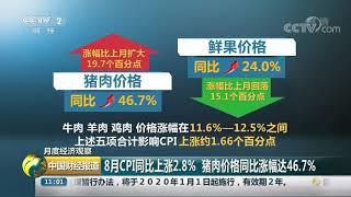 [中国财经报道]月度经济观察 8月CPI同比上涨2.8% 猪肉价格同比涨幅达46.7%| CCTV财经
