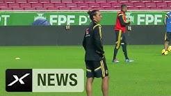 Zlatan Ibrahimovic und Schweden gegen Dänemark | EM-Quali