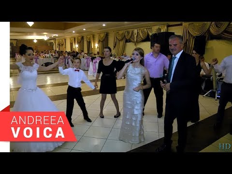 Andreea Voica & Petrica M. Irimica - Ascultare 1 live (Claudia Si Iulian 2016)