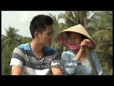 Fine Cuisine - Dishes of the Mekong Delta Wetland - VTV4