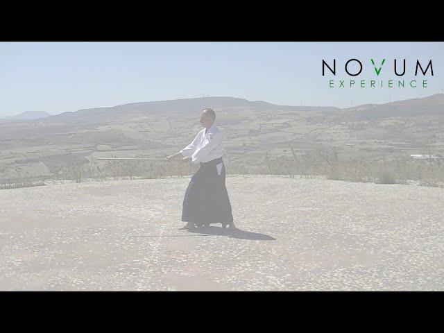06 Shomen Uchikomi-Aikido Novum Experience-Jo Suburi Nijuppon- Uchikomi Gohon-正面打ち込み- 杖素振り20本-打ち込み 本