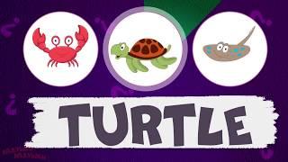 Учим английский для детей! English for kids! Тема - морские животные - развивающие мультики