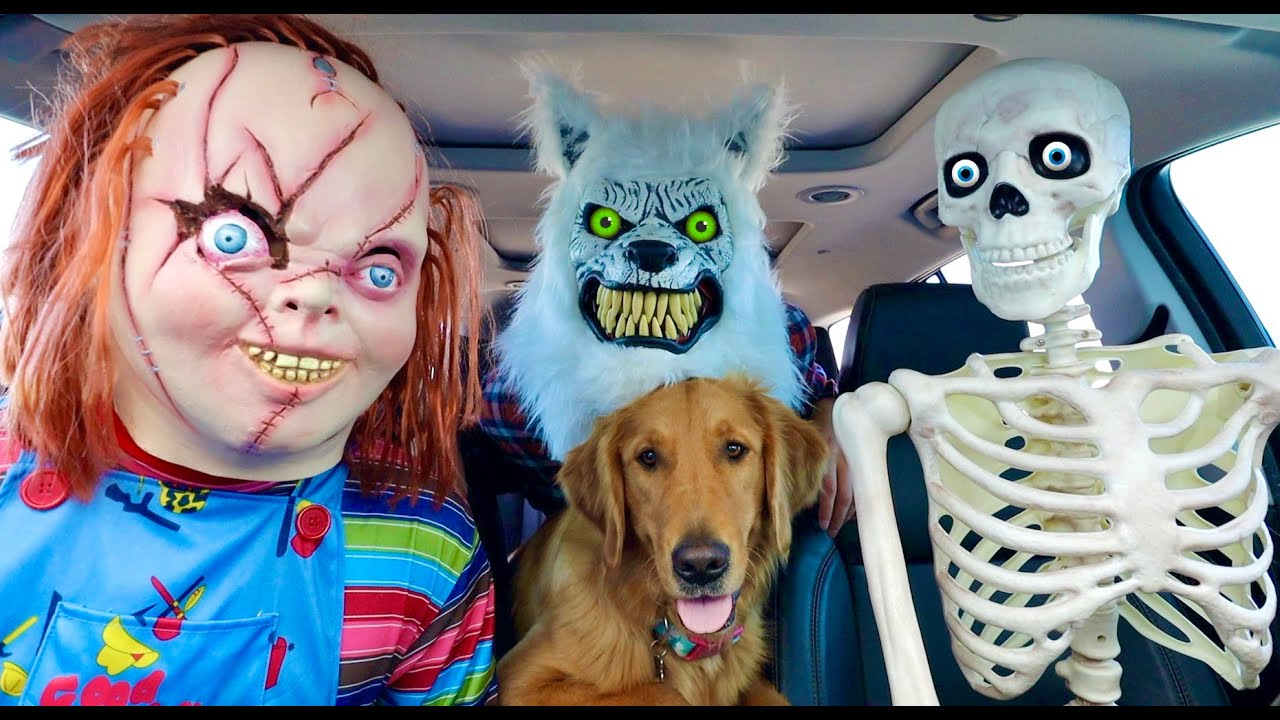 Chucky Surprises Puppy & Skeleton with Car Ride Chase!