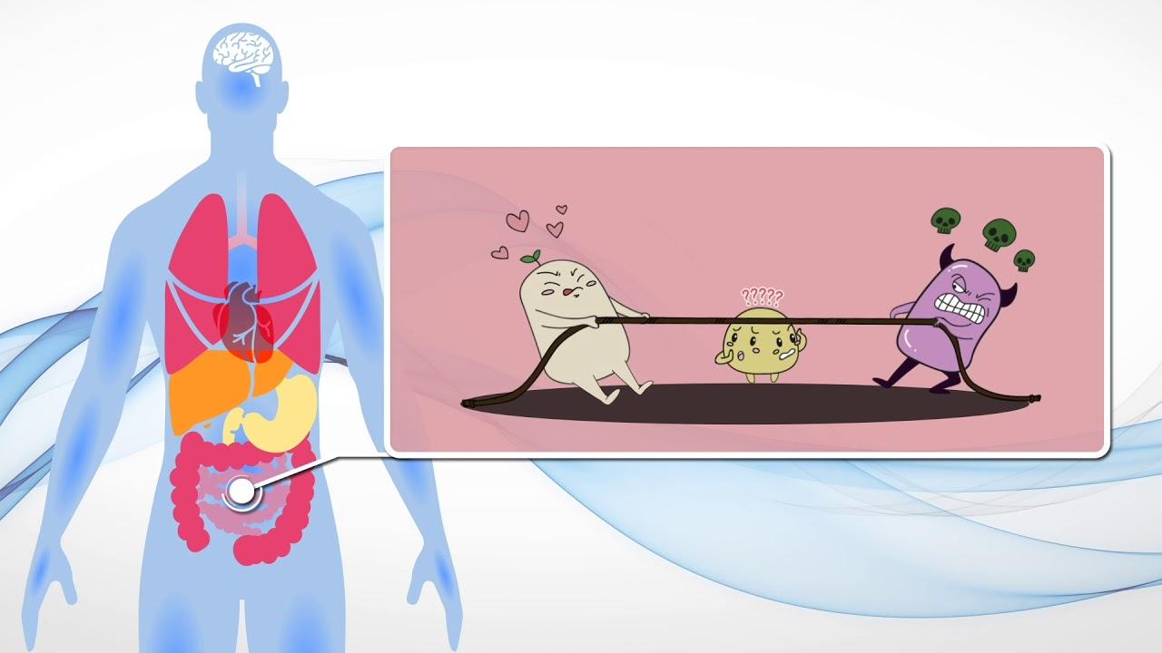 BioMed 腸道微生物DNA測試