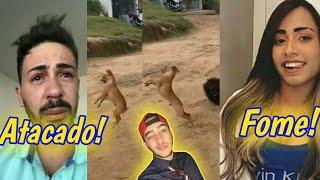 Carlinhos Maia é atacado por cachorro Voador, Mc Loma revela ter passado Fome antes da Fama!