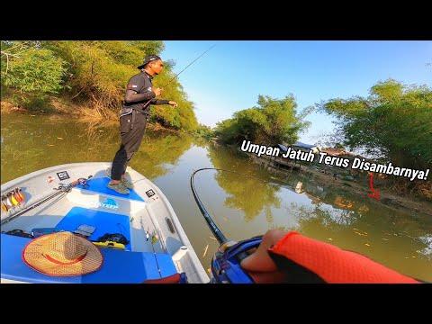 Spot PALING BEST Untuk Casting Haruan Terletaknya di Sungai Kedah!