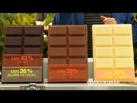 C'est pas sorcier -Les secrets du chocolat