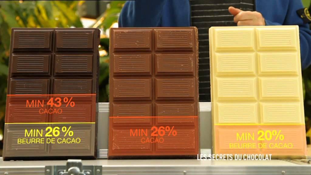Cest Pas Sorcier Les Secrets Du Chocolat
