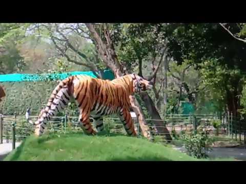 NATIONAL ZOOLOGICAL PARK    NEW DELHI 2018  
