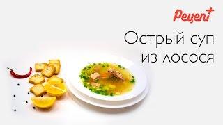 Острый суп из лосося / Рецепт плюс