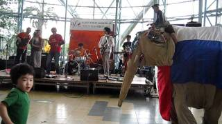 フランス音楽祭2011 名古屋港で演奏するまりもさんのドミンゴ(ディモー...