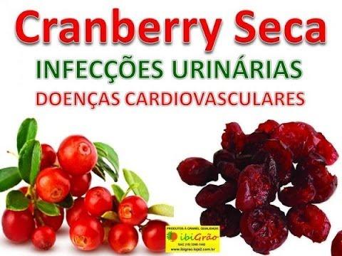 Cranberry Para que Serve Benefícios Como Usar Indicações Infecções Urinária Cardiovascular