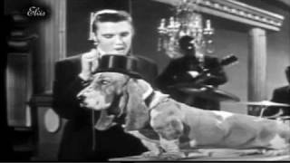 """Elvis Presley dressed in tuxedos perfomed """"Houndog"""" in a hilarious ..."""
