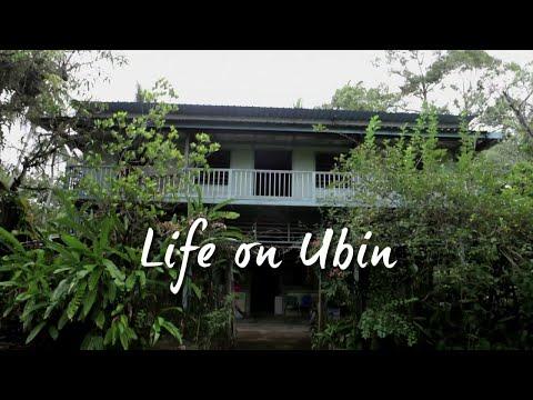 Life on Ubin