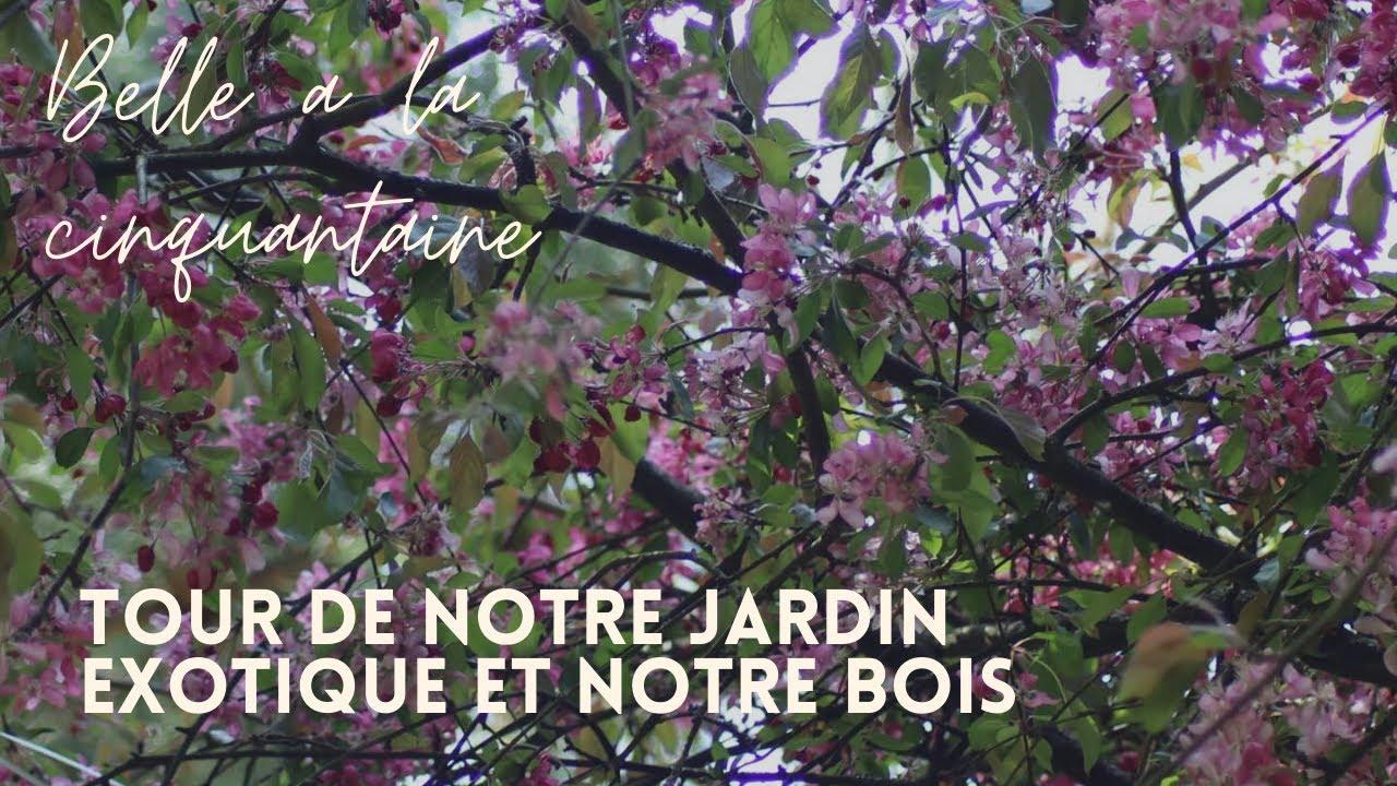 Tour de notre jardin exotique et notre bois