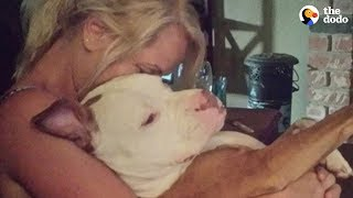 Woman And Shelter Dog Rescue Each Other | The Dodo
