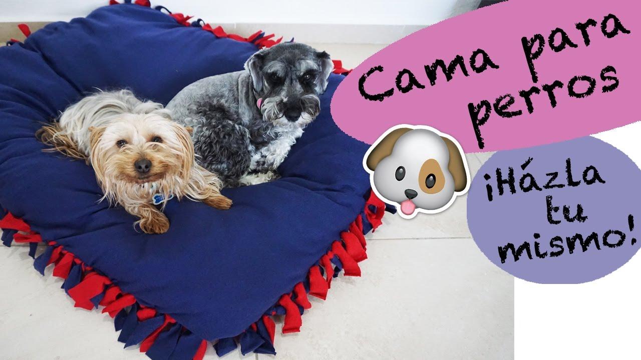 Cama para perros sin costuras h zla tu mismo youtube - Hacer camas para perros ...