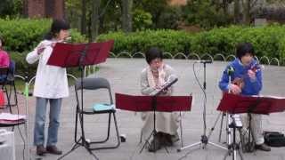 春の日の午後、京都市の高野れんが広場で住民集会〈高野ひろっぱ〉が開...