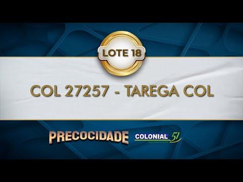 LOTE 18   COL 27257