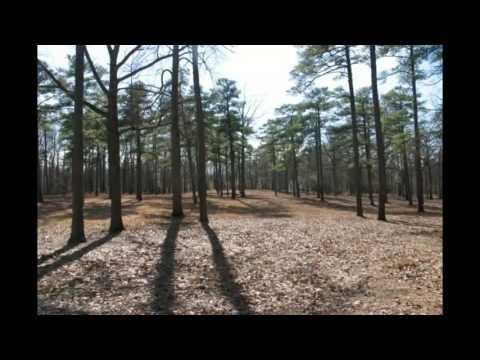 The Haunted  Cold Harbor Battlefield, Mechanicsville, VA