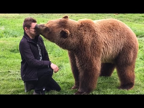 MAN vs BEAR!
