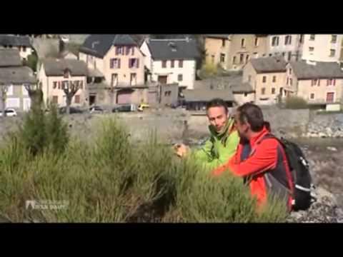 """Sur le chemin de Stevenson - """"Chroniques d'en Haut"""" - France3 2013"""