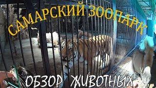 Самарский Зоопарк