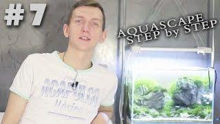 стрижка аквариума как и зачем how to trim aquarium plants