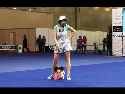 Танцы с собаками 'Евразия - 2015'. Dog Dancing. Canine Freestyle.