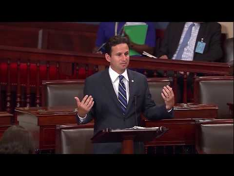 Schatz: The Internet Should Remain Free And Open