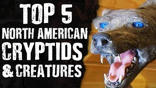 TOP 5 North American CRYPTIDS & CREATURES