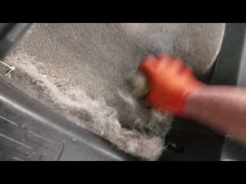 Easiest way to remove dog hair from a car