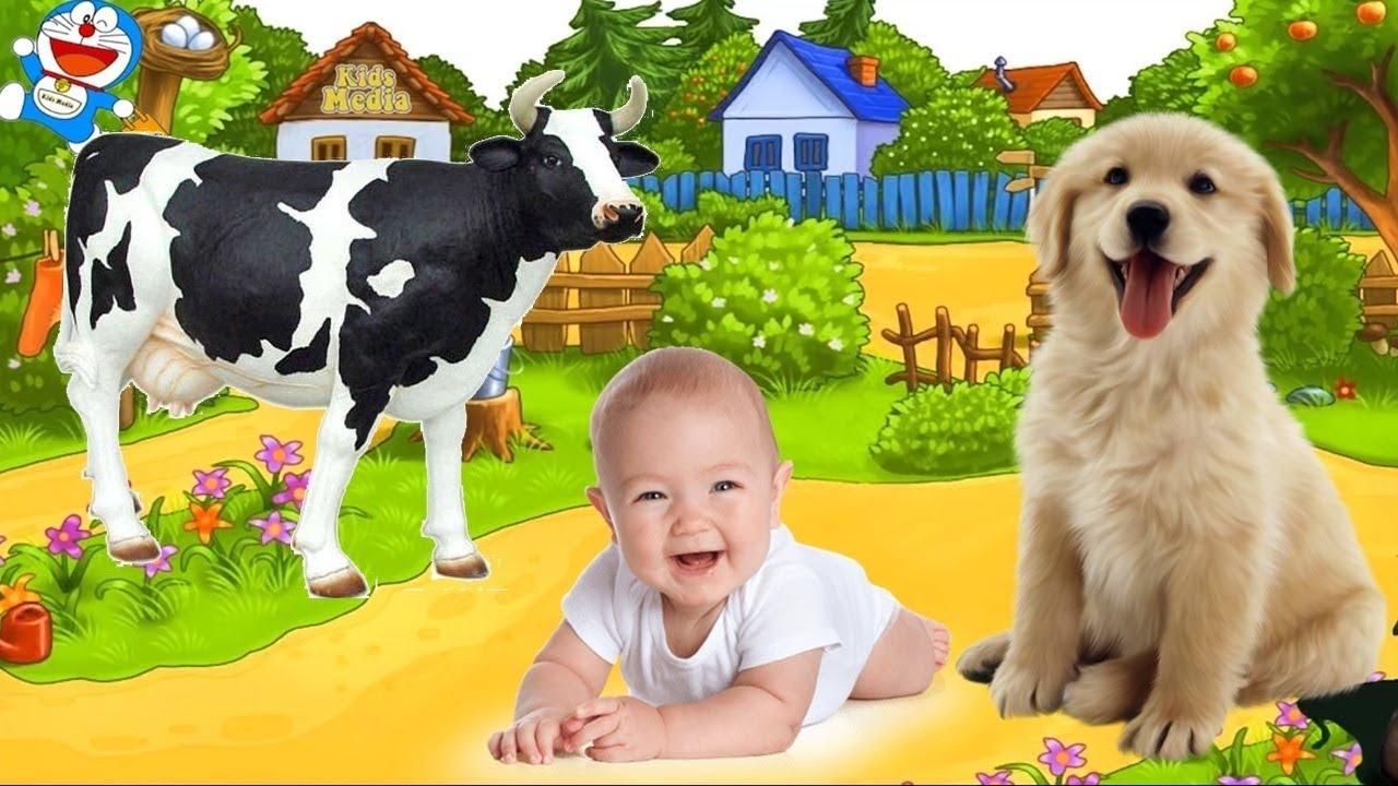 image Con Gì Đây ❤ Dạy Bé Học Con Vật Tiếng Kêu, Hình Ảnh Con Bò, Lợn, Chó, Mèo, Vịt, Gà, Voi, Sư Tử