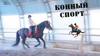 VLOG:ФЕРМА/ЛОШАДИ/КОННЫЙ СПОРТ/