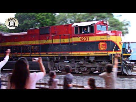 Trenes en Noviembre 2018   AMN Railway