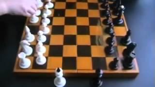 Шахматы для начинающих детей и взрослых! Урок №1