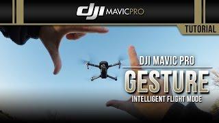 DJI Mavic Pro / Gesture (Tutorial)