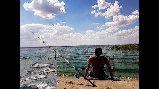 Ловля  карпа на фидер 2017 ВОТ ЭТО УЛОВ рыбалка на видео