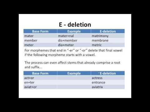 Lexicology Unit 9 Phonological processes