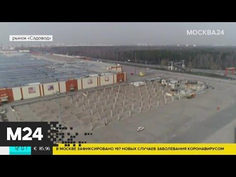 Как с высоты птичьего полета выглядит рынок Садовод - Москва 24
