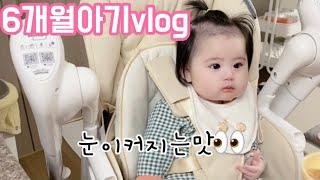[육아브이로그]6개월아기,단호박비타민미음,영양왕플러스이…