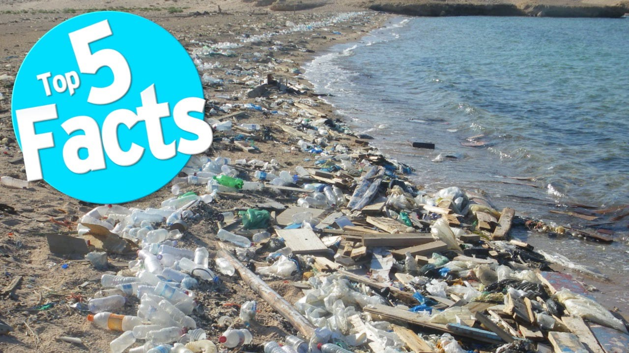 Top 5 Facts about Plastic - YouTube