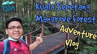 Kembara ke Hutan Paya Bakau Kuala Sepetang!!! 🇲🇾(TSDM Vlog)