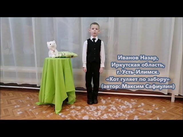 Изображение предпросмотра прочтения – НазарИванов читает произведение «Кот гуляет по забору» М.С.Сафиулина
