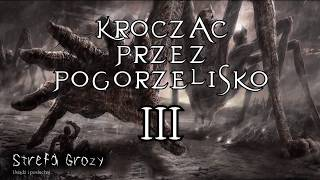 Creepypasta - Krocząc przez pogorzelisko cz.3/3 [Lektor PL]
