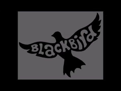 Blackbird- Beatles Cover by Matt Van Nuys & Alex Abreu