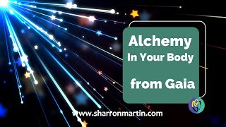 V56 TM Alchemy Support for Your Body-Message & Meditation from Gaia. Bringing information to you!