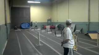 Revolution Flyball's Bsl Team (breed Specific Lineup) -- Practice Run At Y2k9s